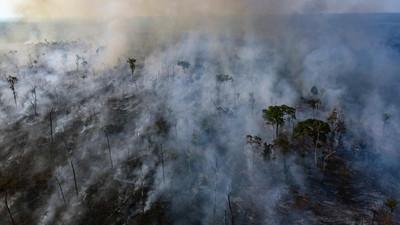 亞馬遜每分狂燒三個足球場 非洲火更烈