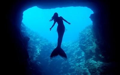 聽說有人拍到不是海牛的美人魚!