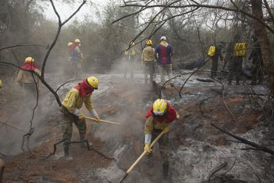 拯救亞馬遜雨林大火 G7砸7億日本助護林