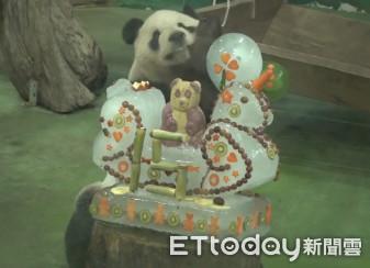 大貓熊團團、圓圓迎接15歲生日!