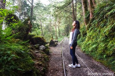 最美小路一日遊!太平山神秘秘境