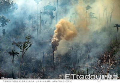 亞洲牛肉需求 加速亞馬遜雨林消失