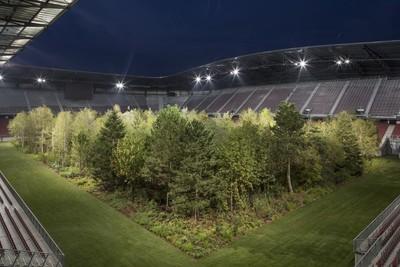 最大裝置藝術 足球場變森林