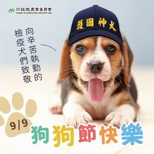 狗狗節農委會秀「護國神犬」戴帽萌照