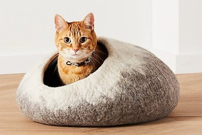 C&B寵物系列 讓貓睡在岩石裡