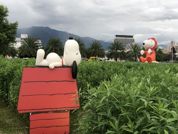 ▲Snoopy花蓮迷宮探險。(圖/Snoopy花蓮迷宮探險活動單位提供)