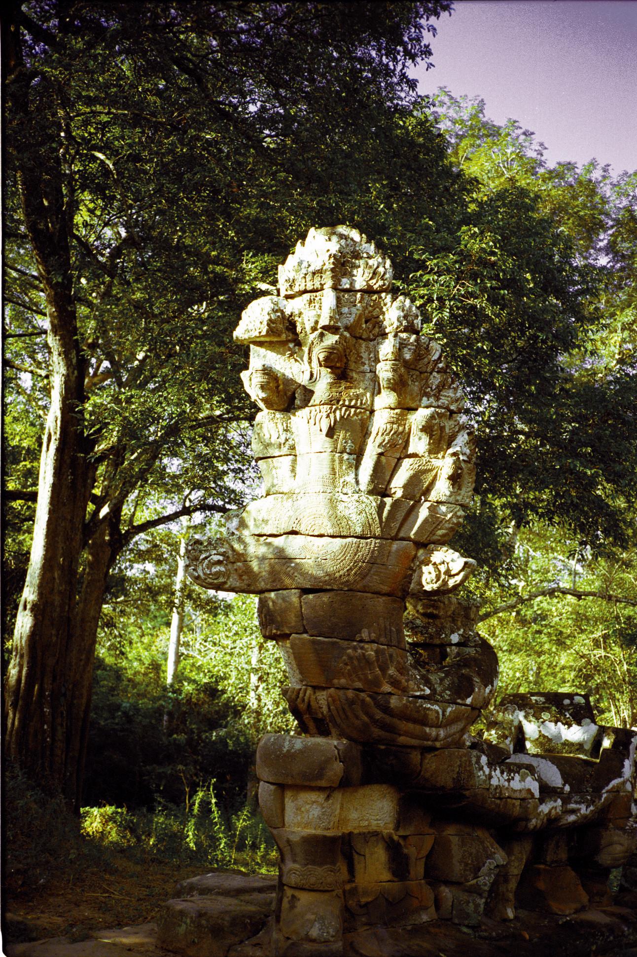▲▼柬埔寨、《真臘風土記》。(圖/翻攝自維基百科)