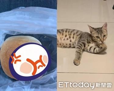 這貓懂吃! 偷吃包內餡得意舔手