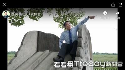 瘋追劇遊場景別忘和台南老樹拍照打卡