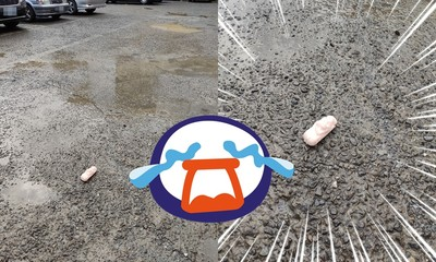 路過停車場!他2次捕捉「粉色肉條」躺路中