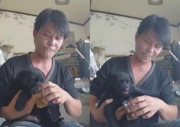 ▲直播餵幼犬喝啤酒菜,林佳新發文道歉。(圖/翻攝自林佳新直播、有點毛毛的)
