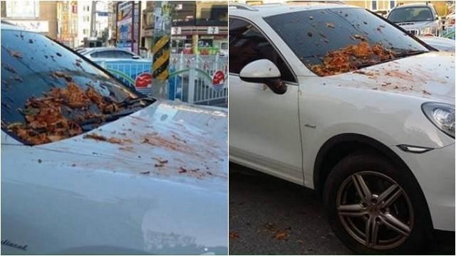 懶吼「誰的車!」保時捷愛卡餐廳門口 韓國大媽端泡菜替他洗車