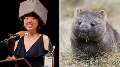 還是很厲害!台學者獲「搞笑版諾貝爾獎」 研究內容:袋熊便便是方形