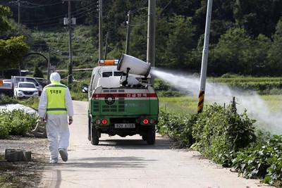 防非洲豬瘟再傳入!中國禁南韓豬產品入境