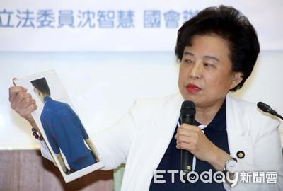 沈智慧辭國民黨中常委 籲國民黨檢討重建國人信任