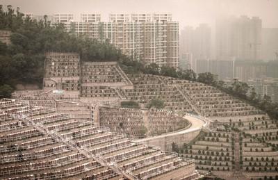 香港「墓地照」曝光 墓碑擠滿山坡
