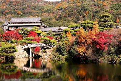 私藏楓葉絕美景點盡在日本山口縣