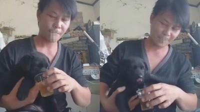 林佳新抓幼犬強灌酒被罵爆! 獸醫曝7種最常被忽略「隱藏版食物」更要注意