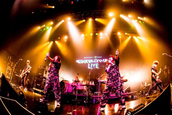 ▲歌迷癡等9年終於再來!「帕妃Puffy」宣布11月台北開唱。(圖/群彩文創提供)