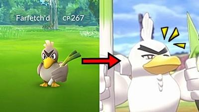 大蔥鴨終於進化了!變成兩津眉「蔥遊兵」粉全笑傻:那眼神好魔性
