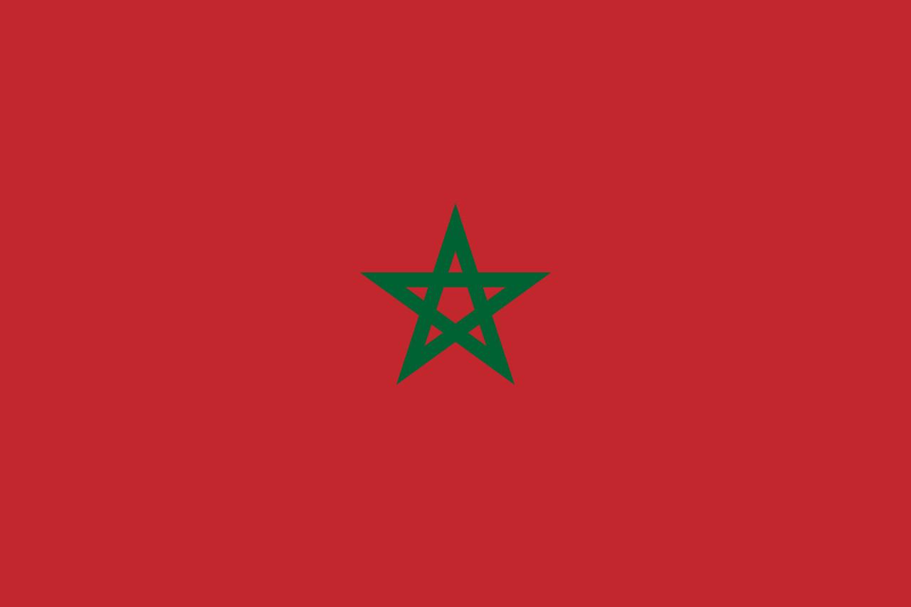 ▲摩洛哥國旗。(圖/翻攝自維基百科)