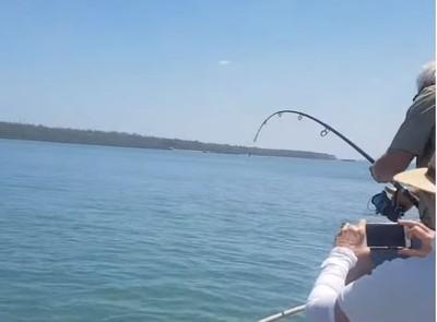 湖邊釣起巨鱷 嚇歪剪斷釣魚線