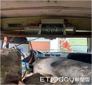 廂型車塞滿5根珍貴櫸木 台東警攔截查辦