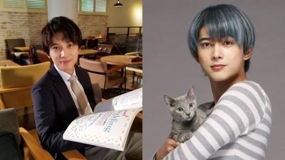 跟「國寶級帥哥」談戀愛!吉澤亮臉蛋演技都超優:演貓讓人超想吸