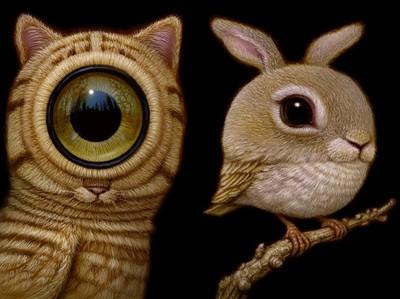 像貓像鳥又像兔的超現實大眼生物
