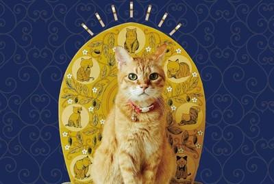 佛光普照貓抓板 在自家把貓供起來拜