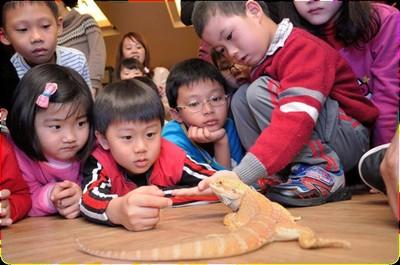 竹市昆蟲館10月開幕 最棒教育據點