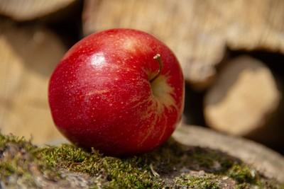 別只買Apple!營養師曝「每日1蘋果」4好處