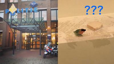 小鳥停在嫌犯肩膀上一起被逮捕!荷蘭電視台保護「鳥隱私」貼心上黑條