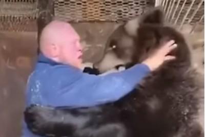 MMA選手K.O「250公斤棕熊」贏了