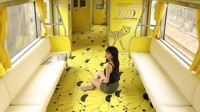 偶像光環破滅!江孟芝「石虎列車事件」癥結:光會推銷自己並不夠