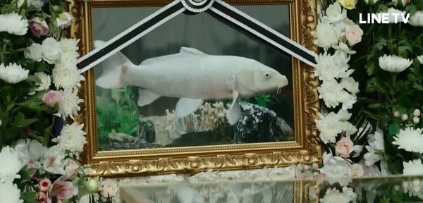 ▲《優雅的家》魚葬禮。(圖/翻攝自LINE TV)