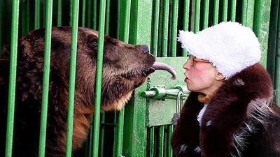 傷害人類必須槍殺!女飼育員截肢醒來「拜託長官放過熊」:牠只是出於本能