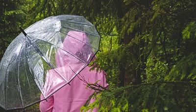 雨傘成汙染!「透明傘」更難回收