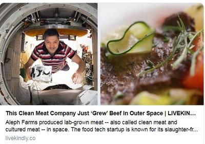 解決糧食安全! 首塊「太空人造肉」誕生