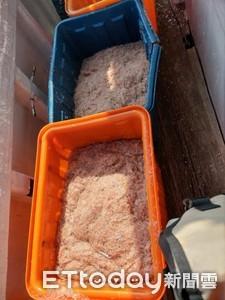 高屏溪出海口捕撈赤尾青 漁船被查稽送辦