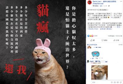 貓瘋遭檢舉下架 萬貓奴集氣聯署