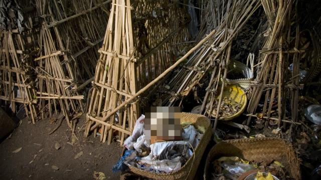 親人過世「擺樹下任由發臭」!峇里島屍體村遍地腐屍 過路還得付錢
