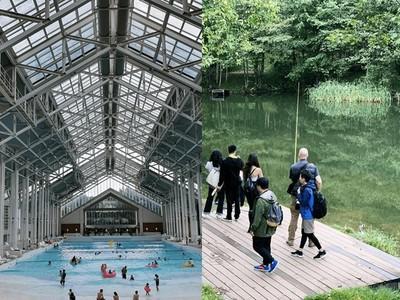 冬季很夢幻,夏天的北海道更好玩
