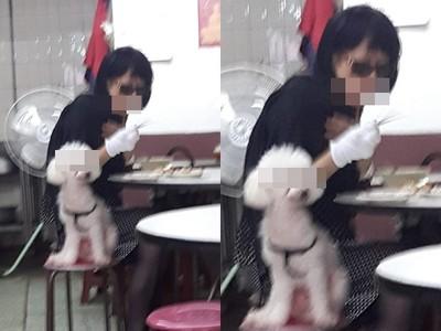 墨鏡女拿店內餐盤餵狗!他罵人公審被網嗆翻