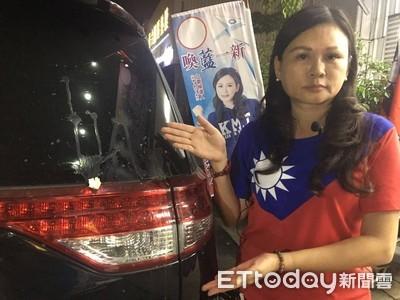 民主政治不暴力選舉活動拒暴戾