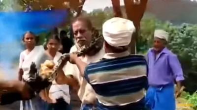 好心救蛇反被恐怖勒脖 男差點斷氣
