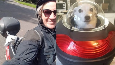友過世憂鬱 狗見阿公太空艙笑了