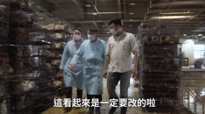 柯P巡家禽市場:產地屠宰不是整車運到台北