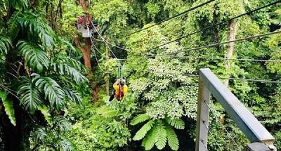 夫妻挑戰叢林飛索 慘從10公尺高墜地