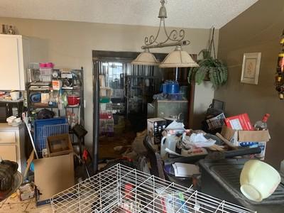 3女童與245隻動物同住「超噁垃圾屋」